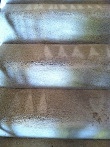 San-Mateo-Stairs-Carpet-Cleaning
