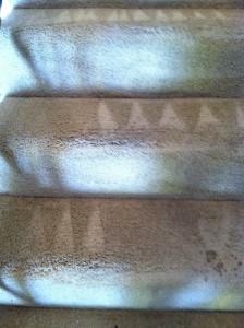 San-Mateo-Stairs-Carpet-Cleaning