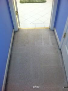 San-Mateo-Vomit-after-carpet