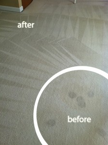 San-Mateo-Wine-Stain-Carpet-Cleaning