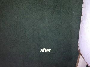 San-Mateo-after-carpet
